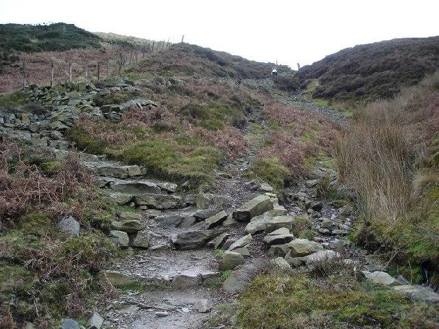 Route up Moel Llys y Coed