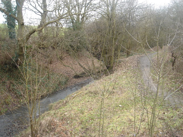Cunningham Brook, Daisy Hill