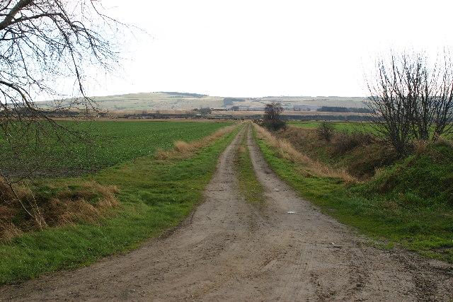 Farm track near Shandwick Mains