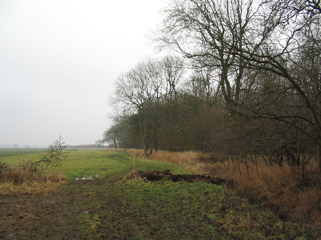 Bridleway past Norwood