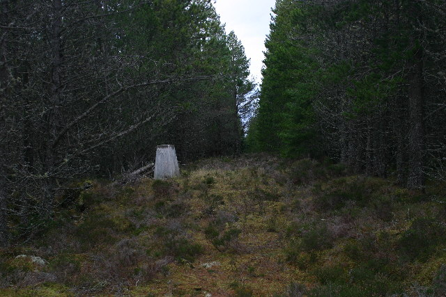 Hill of the Wangie trig