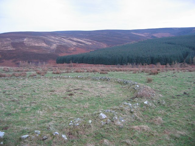 Ruined sheepfold.