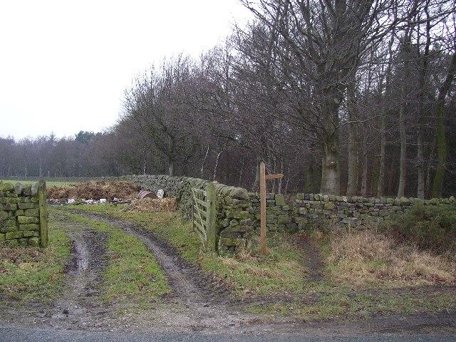 Start of footpaths at Timble Ridge