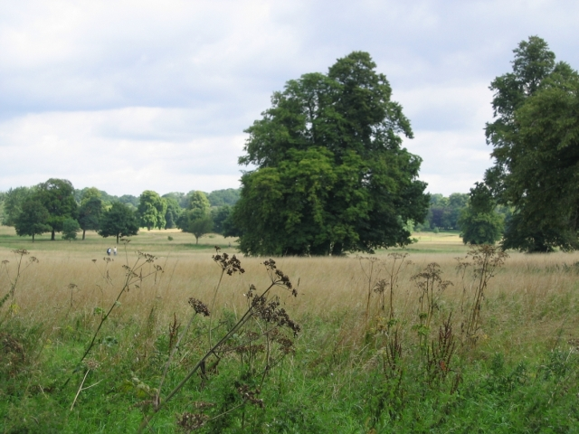 Nonsuch Park © Dave Eadie :: Geograph Britain and Ireland