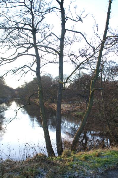 River Almond near Craigshill, Livingston