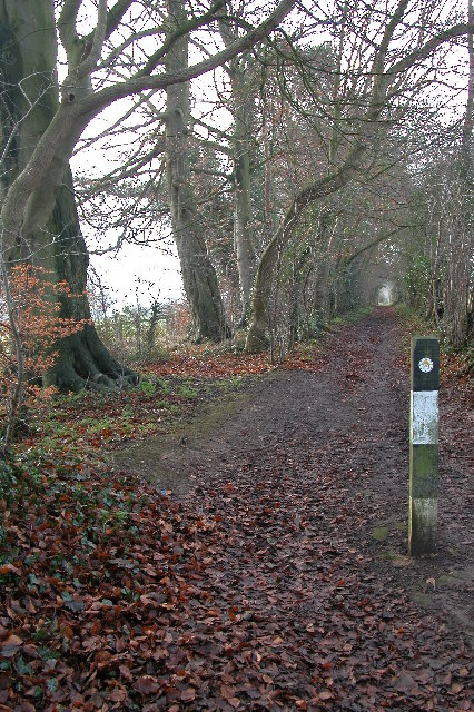 The Monarch's Way, Broadwell