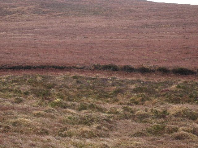Old Peat Cuttings