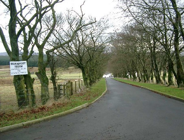 Burnfoot farm roadend