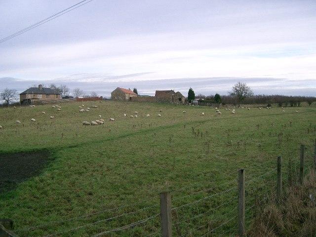 Brigghills Farm