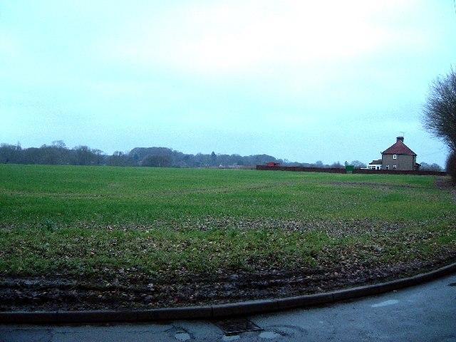 Wide open fields off Oak Lane, near Brazier's End