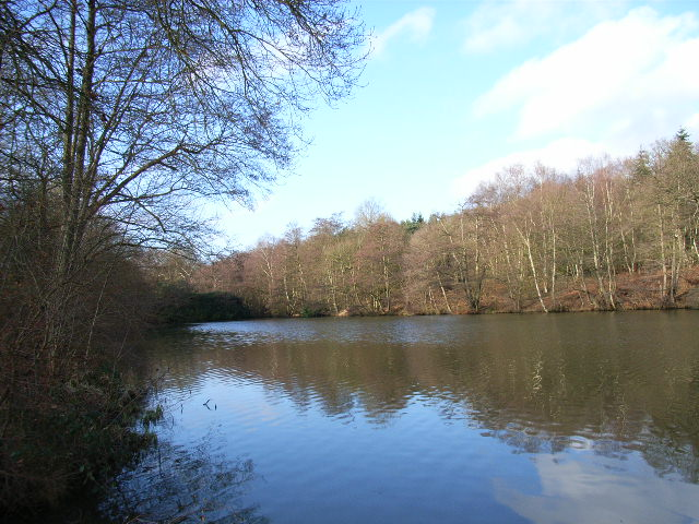 The western end of Virginia Water