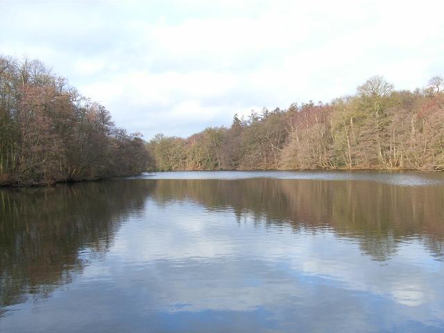 Johnson's Pond, Windsor Great Park