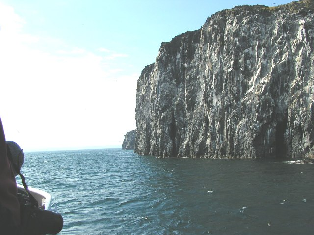 Isle of May cliffs.