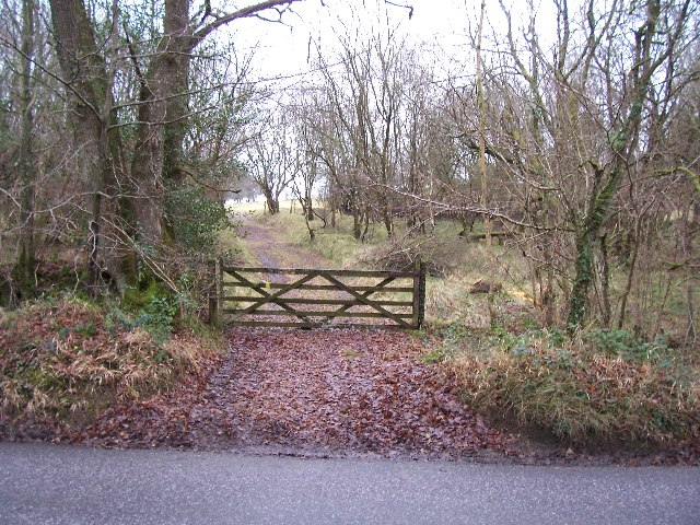 Gate and track