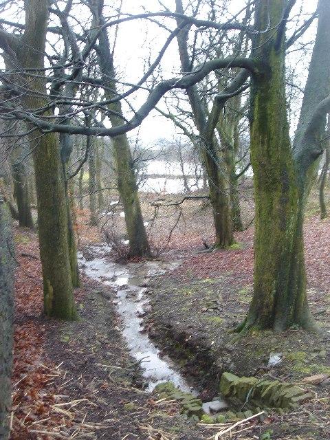 Wallsuches reservoir, Horwich