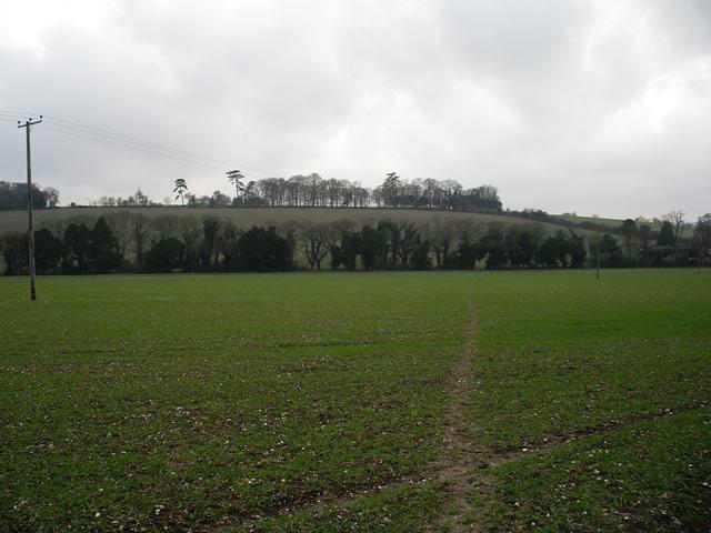 Footpath across field, south of Chalkvale