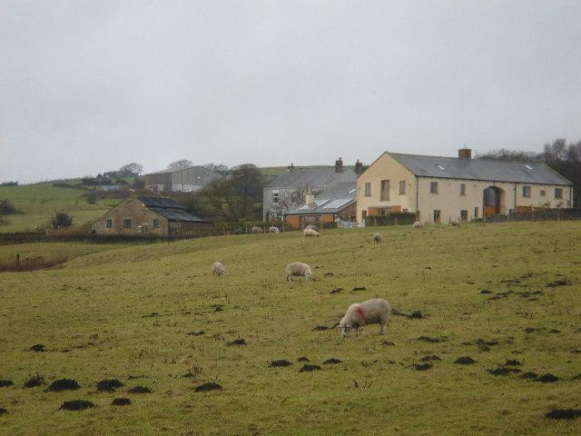 Rants Farm