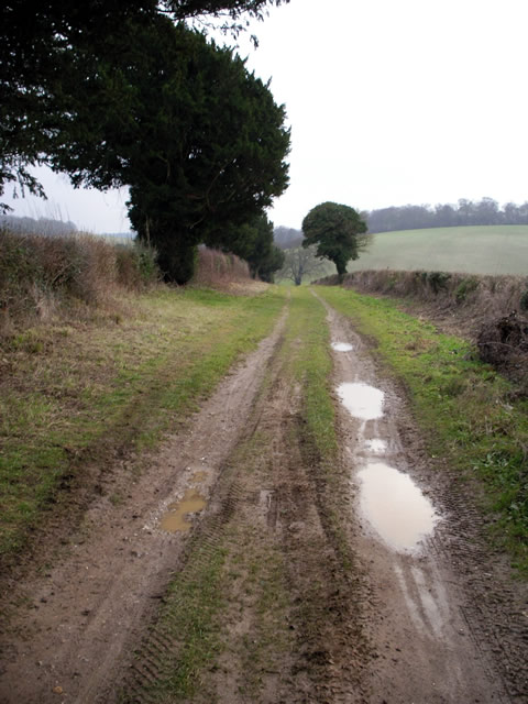 Byway south of Up Somborne