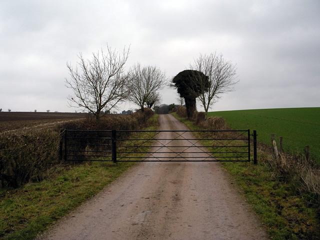 Farmtrack near Up Somborne
