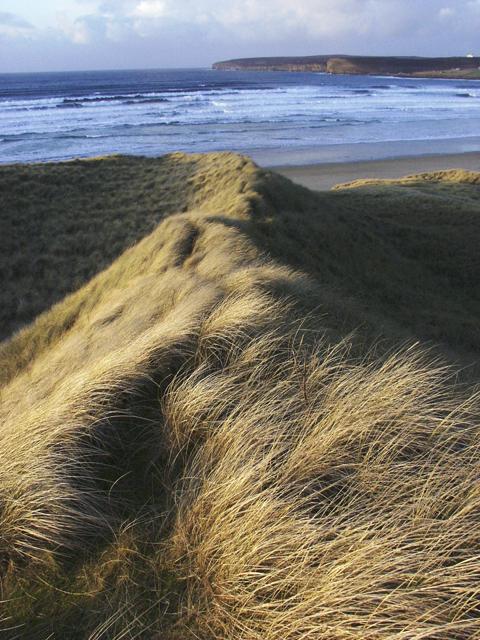 Sand dunes, Dunnet Bay, Caithness