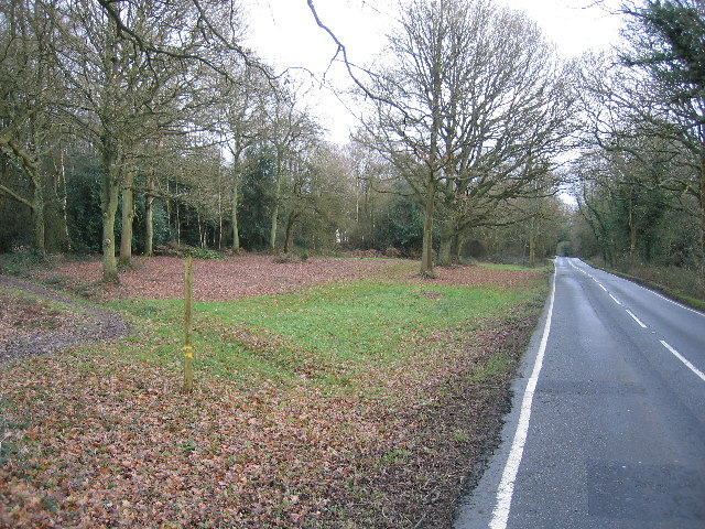 Holmwood Common, from Mill Lane