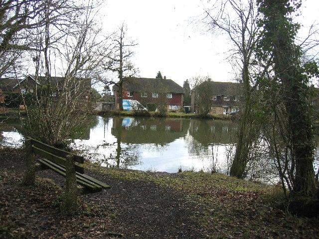 The Pond near Holmwood Station