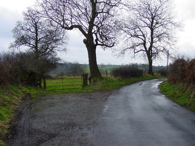 A country lane at Swettenham