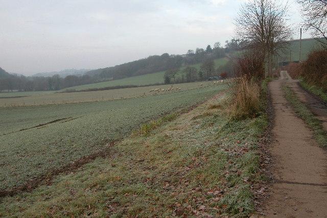 Private lane leading to a farm at Stone Barton