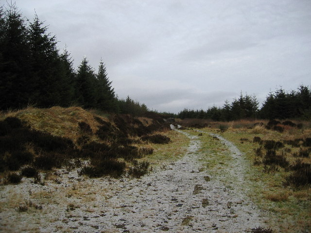 Track to Greshornish