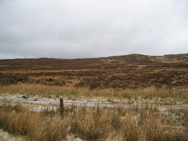 Old Road on the Moor