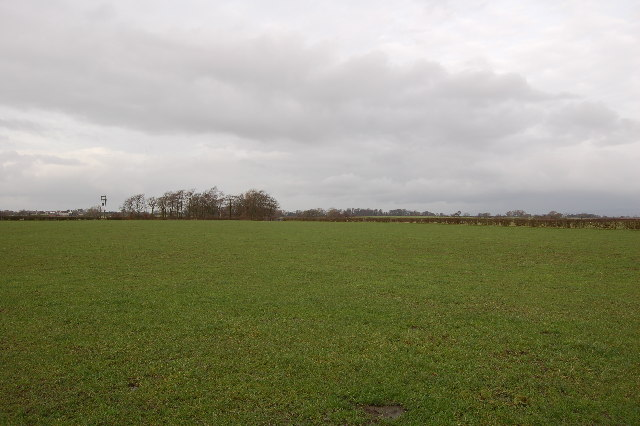 Looking east from Saswick