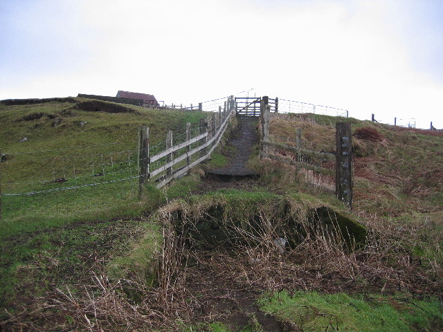 Sheep Loading Ramp