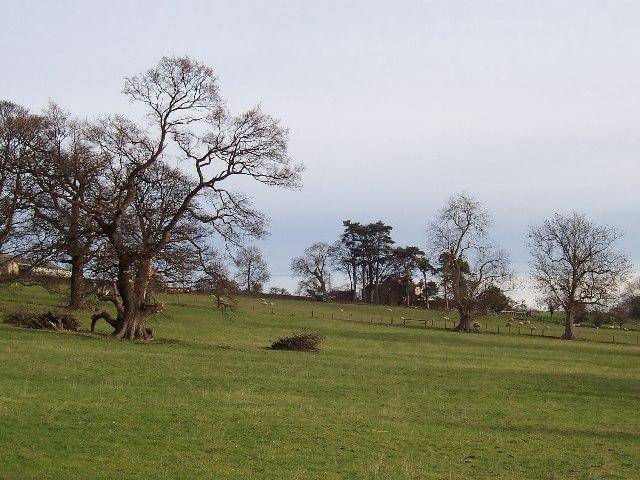 Approaching Danby Grange