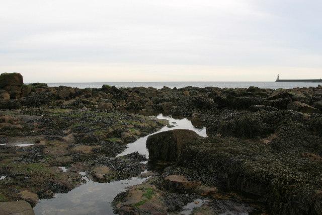 Rock pools below Sharpness Point