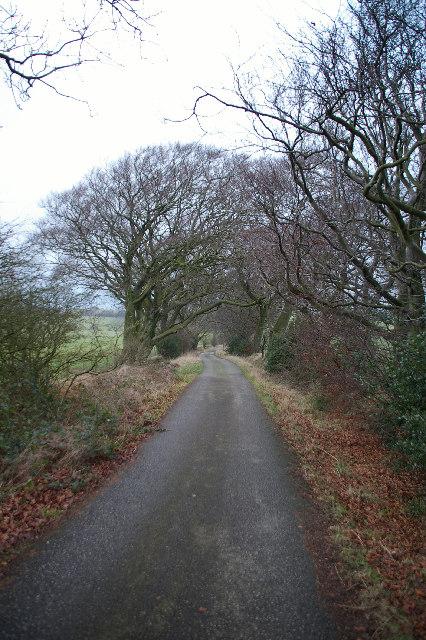 Coal Pit Lane, Gisburn