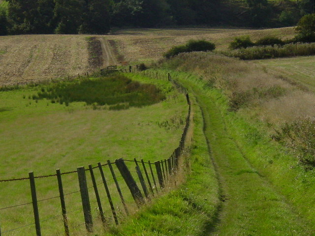 Green lane near Alnwick