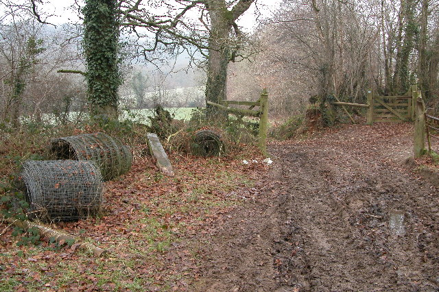 Bridleway in Great Wood Moor