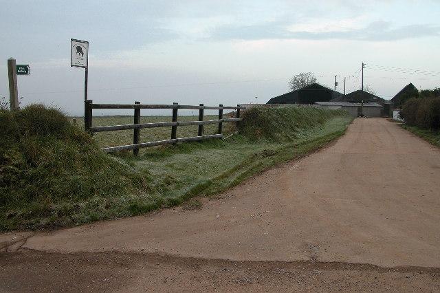 Driveway to Nutson Farm