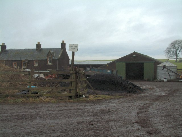 Muddy farmyard