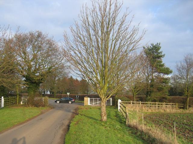Kingston Farms driveway