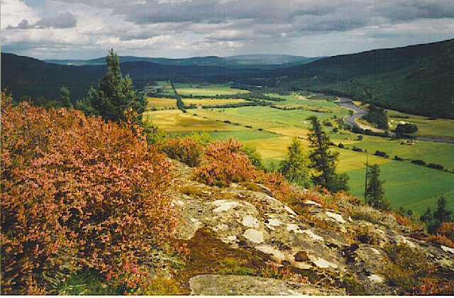 Royal Deeside, east of Ballater
