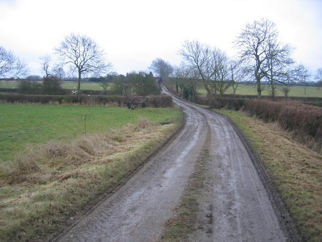 Driveway to Bishop's Gorse Farm