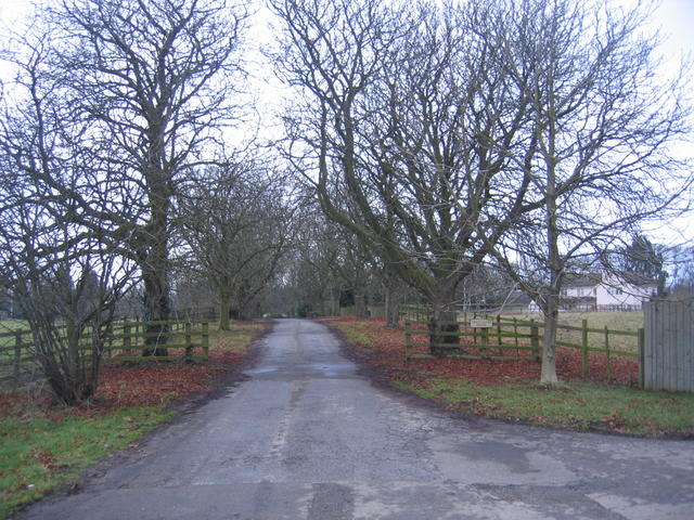 Driveway to Three Gates House