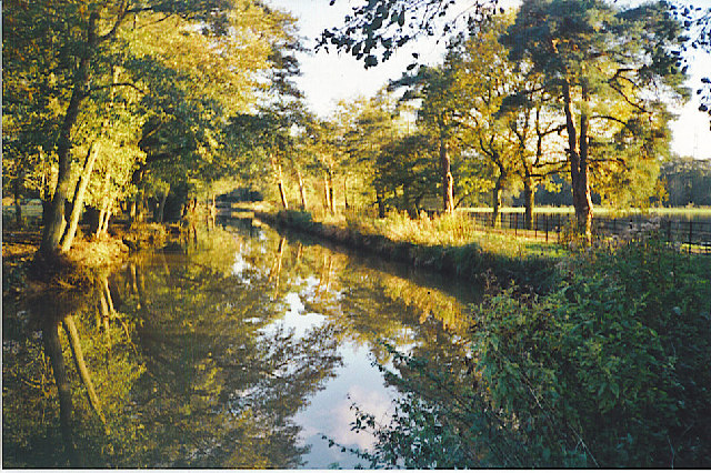 Autumn on the Wey by Sutton Place.
