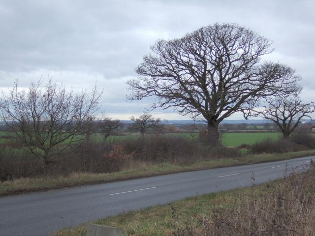 Fields Near New Lodge Farm
