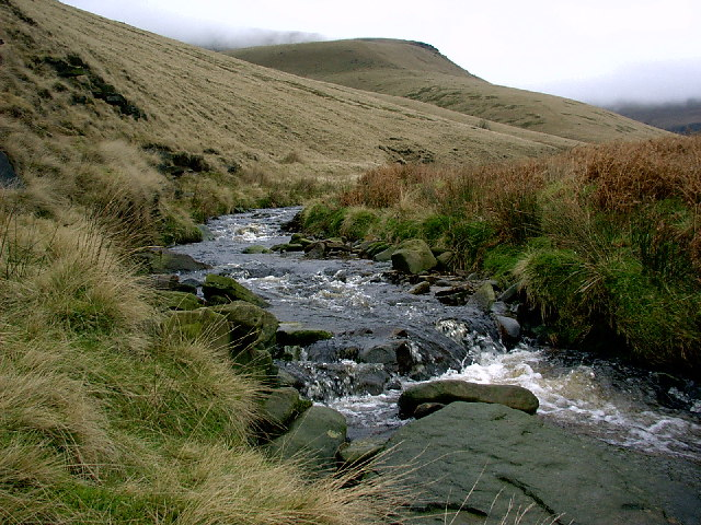 Shelf Brook