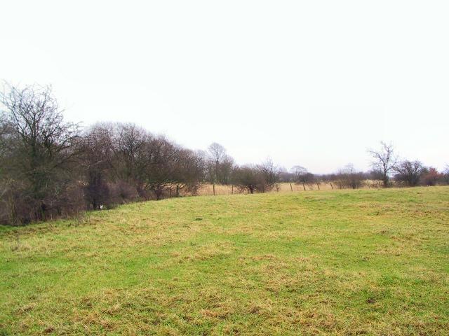 Bothwell Park Farm