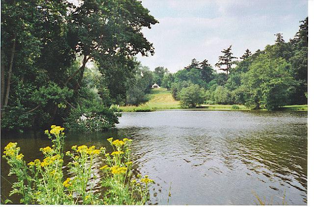The Lake, Painshill Park
