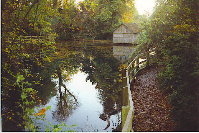 Silent Pool, near Shere