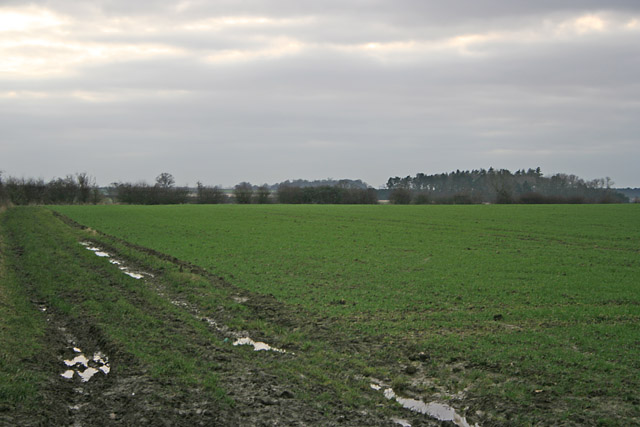 Farmland by Ridgemere Lane , Leicestershire